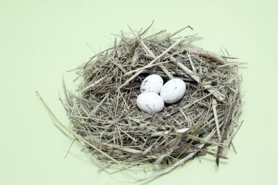 Nest With Speckled Eggs