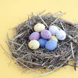 Colourful Easter Nest