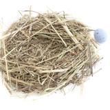 Empty Decorative Nest