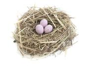 Nest And Pink Eggs