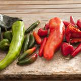 Large selection of fresh chili peppers